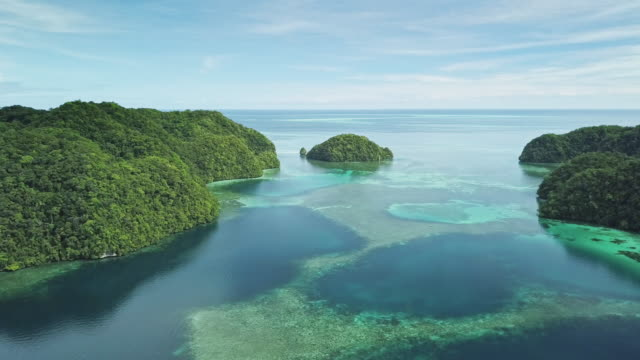 vídeos de stock, filmes e b-roll de ws aerial view of the rock islands / koror, palau - recife fenômeno natural