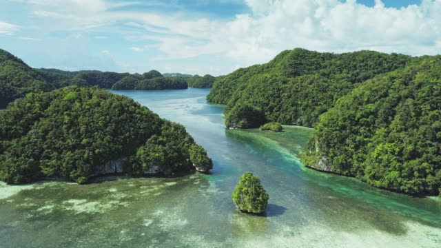stockvideo's en b-roll-footage met ws aerial view of the rock islands / koror, palau - tropisch regenwoud