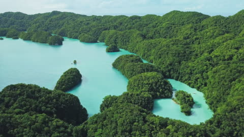 ws aerial view of the rock islands / koror, palau - island stock videos & royalty-free footage