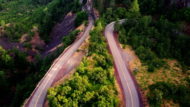 aerial view of the rowena crest winding road in oregon - rolling landscape stock videos & royalty-free footage