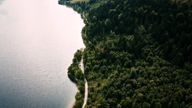 aerial view of the slovenian countryside close to the bohini lake - triglav national park stock videos and b-roll footage