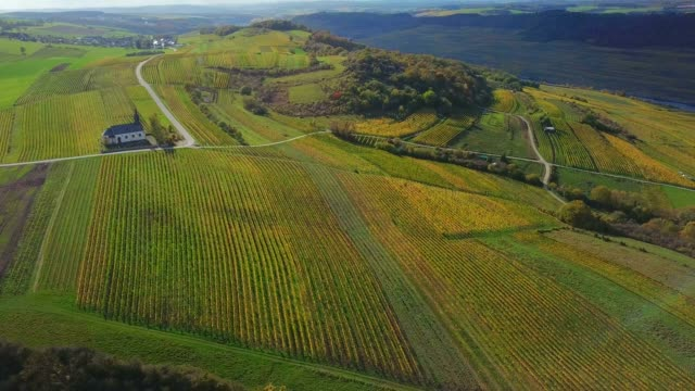 aerial view of the st. rochus chapel in the vineyards near nittel, obermosel, moselle valley, rhineland-palatinate, germany - viniculture stock videos & royalty-free footage