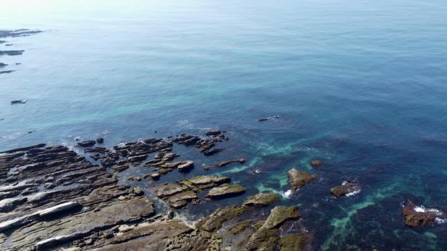 vidéos et rushes de a aerial view of the vast ocean and woods - océan pacifique
