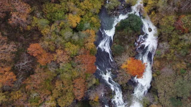 aerial view of the waterfalls of the river gándara, la gándara, soba valley, valles pasiegos, cantabria, spain, europe - soba stock videos & royalty-free footage