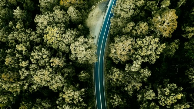 aerial view of the winding road in australia - high angle view stock videos & royalty-free footage