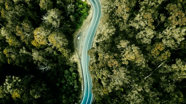aerial view of the winding road in australia - queensland stock videos & royalty-free footage