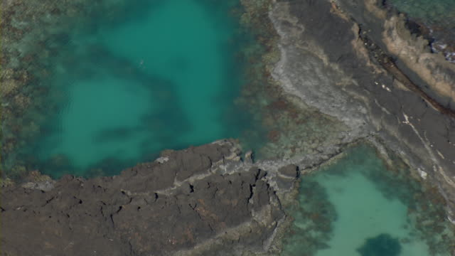 aerial view of tidal pond in ahihi-kinau natural area reserve on maui. - tide pool stock videos and b-roll footage