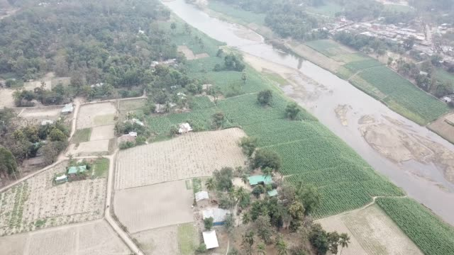 vidéos et rushes de aerial view of tobacco crop field in bangladesh tobacco cultivation in bandarban hill district of bangladesh raises hackles as some companies are... - chapeau de paille