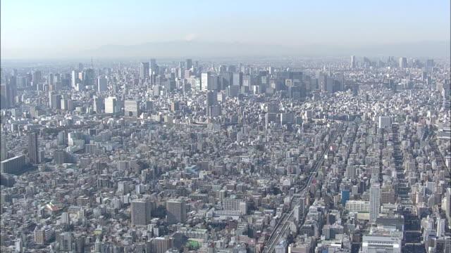Aerial view of Tokyo, Tokyo Tower, Mt. Fuji.