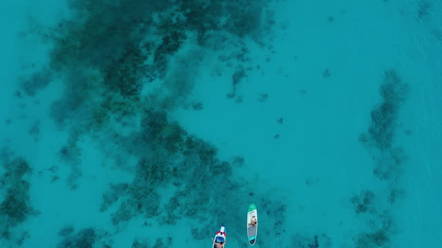 aerial view of tourists doing stand up paddleboarding at the crystal clean turquoise ocean during sunset on zanzibar island, tanzania - oar stock videos & royalty-free footage
