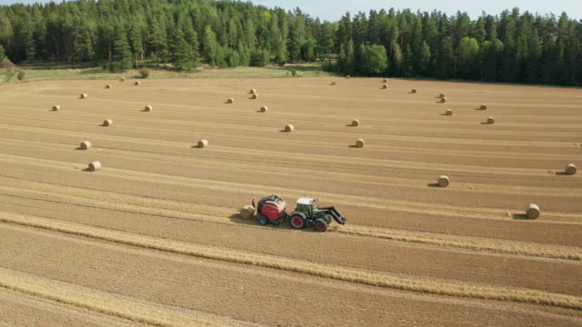 aerial view of tractor collecting hay and releasing hay rolls on field - plant stem stock videos & royalty-free footage