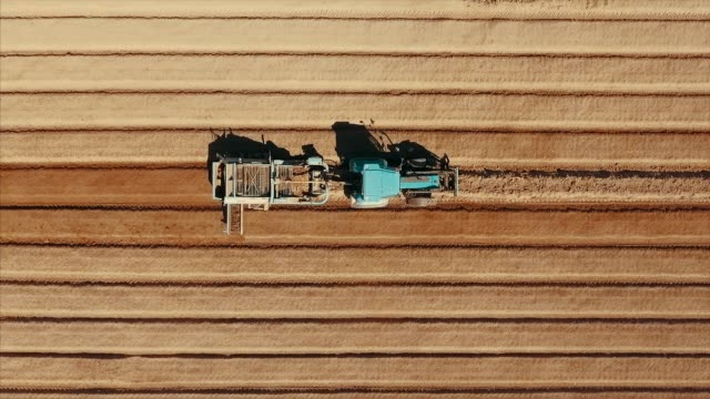 aerial view of tractor plowing at potato field - sowing stock videos & royalty-free footage