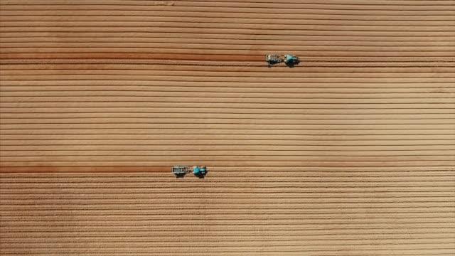 vista aerea dell'aratura del trattore nel campo delle patate - striato video stock e b–roll