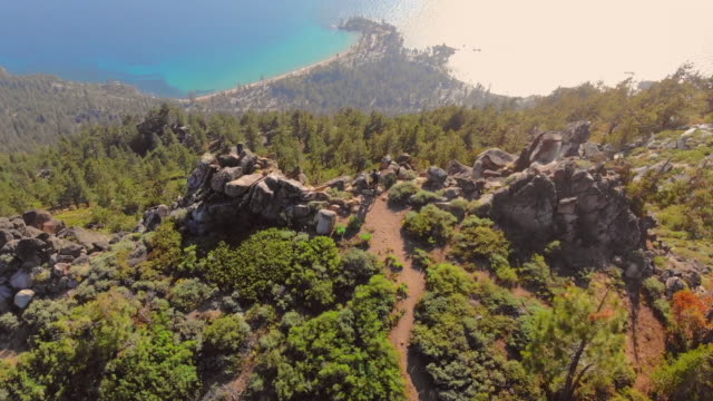 aerial view of trail overlooking lake - pinaceae stock videos & royalty-free footage