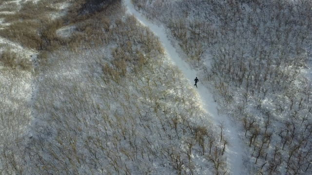 aerial view of trail runner on snow - footpath stock videos & royalty-free footage