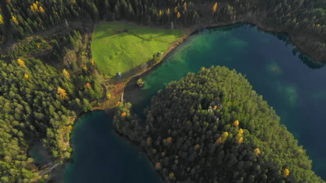 aerial view of trees by lake during sunny day, drone moving over forest - lake fernstein, austria - austria stock videos & royalty-free footage