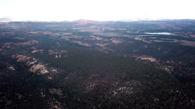 4 K 国立公園で自然の木の空撮