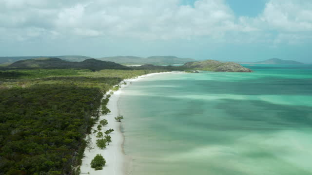 aerial view of tropical beach in cape york northern peninsula - rainforest stock videos & royalty-free footage