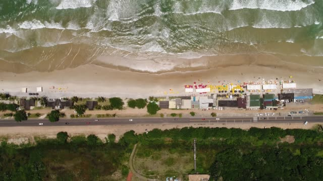aerial view of tropical beach - hispaniola stock videos and b-roll footage