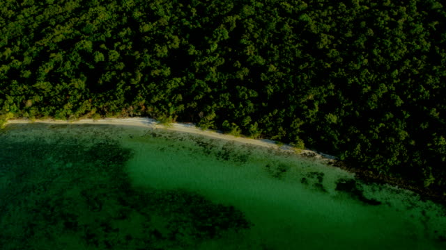 aerial view of tropical caribbean island southern florida - the florida keys stock videos & royalty-free footage