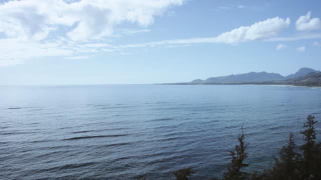 aerial view of tropical coastline - fatcamera stock videos & royalty-free footage