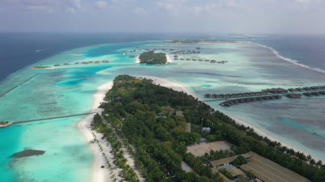 aerial view of tropical island at maldives - reef stock videos & royalty-free footage