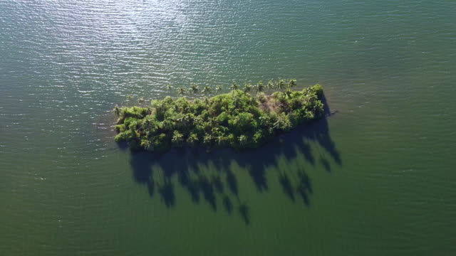 aerial view of tropical island in munroe island backwaters - backwater stock videos & royalty-free footage