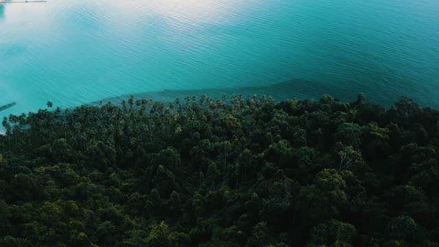 aerial view of tropical island with white sand palm trees. - trat province stock videos and b-roll footage