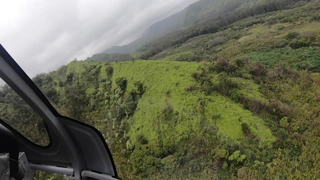aerial view of tropical landscape from  helicopter - helicopter stock videos & royalty-free footage