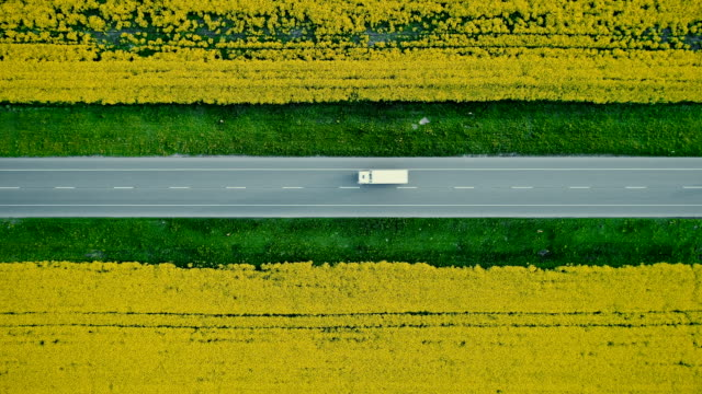 Aerial view of truck on  highway  near the yellow field of rapeseed