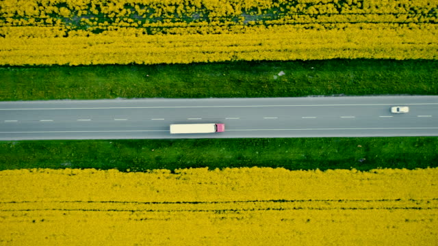 aerial view of truck on  highway  near the yellow field of rapeseed - transportation stock videos & royalty-free footage