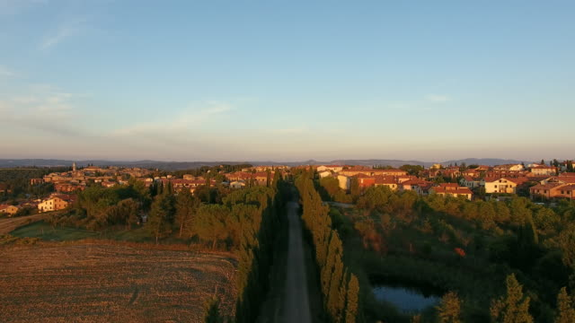 Aerial view of Tuscany landscape with cypress trees