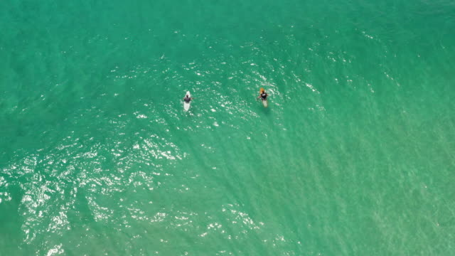 aerial view of two people surfing on waves - surfing stock videos & royalty-free footage