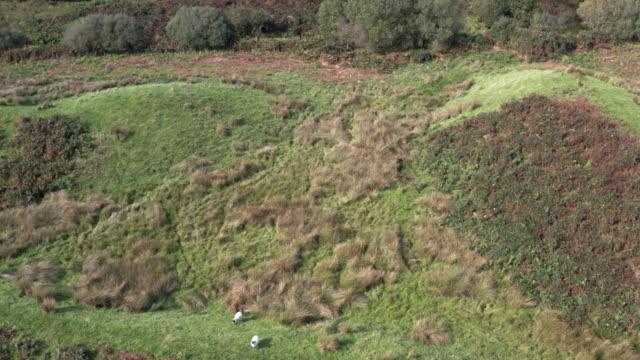 vídeos y material grabado en eventos de stock de vista aérea de tierras no cultivadas en la escocia rural en verano - johnfscott