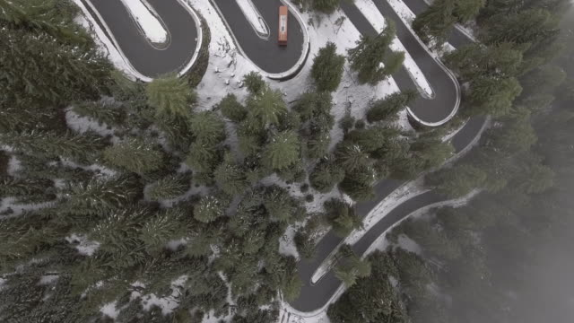 Aerial view of vehicles moving on winding road amidst trees on snow covered mountain, Italy
