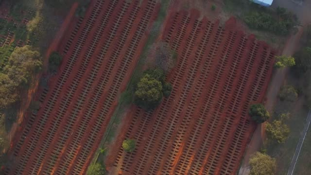 vídeos de stock, filmes e b-roll de aerial view of vila formosa cemetery amidst the coronavirus pandemic on may 18, 2020 in sao paulo, brazil. the vila formosa cemetery is the largest... - bali