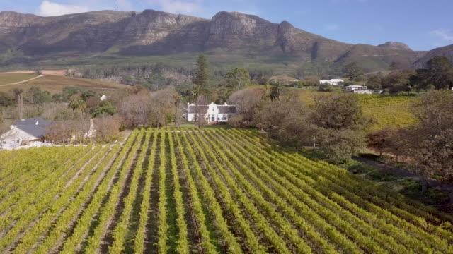 南非開普敦葡萄園鳥瞰圖 - stellenbosch 個影片檔及 b 捲影像