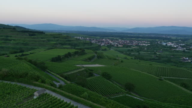 aerial view of vineyards and farmland - 40 seconds or greater stock videos & royalty-free footage