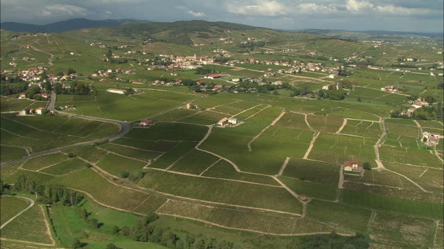 ws aerial view of vineyards, beaujolais, rhone-alpes, france - rhone alpes stock videos & royalty-free footage