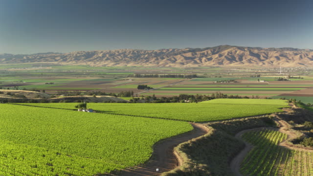aerial view of vineyards, farms and barren mountains in monterey county, california - monterey county stock videos and b-roll footage