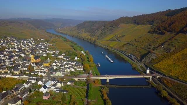 stockvideo's en b-roll-footage met aerial view of vineyards in autumn near trittenheim, moselle river, moselle valley, rhineland-palatinate, germany - duitsland
