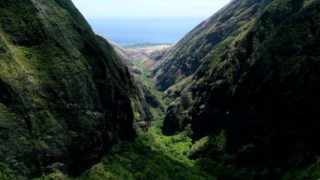 vídeos de stock e filmes b-roll de aerial view of volcanic cliffs valley rainforest maui - povo polinésio