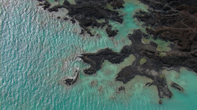 aerial view of volcanic rock in ahihi-kinau natural area reserve on the coast of maui. - vulkanausbruch stock-videos und b-roll-filmmaterial