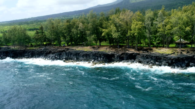 aerial view of volcanic shoreline maui hawaii usa - hawaii inselgruppe stock-videos und b-roll-filmmaterial