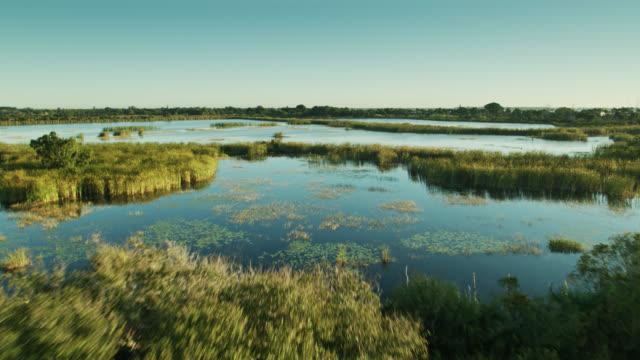フロリダサバンナグレードの水の空中写真 - 泥沼地点の映像素材/bロール