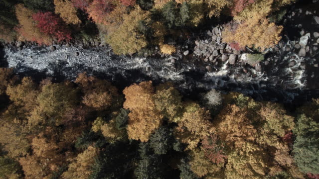 Luftaufnahme der Wasserfall im Wald Natur, Quebec, Kanada