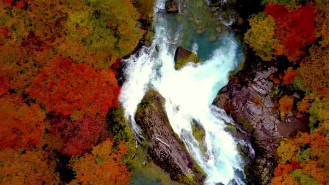 aerial view of waterfall in los glaciares national park - provinz chubut stock-videos und b-roll-filmmaterial