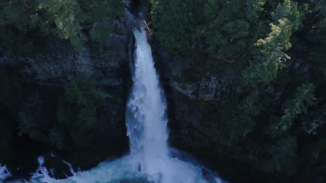 aerial view of waterfall in lush forest - fatcamera stock videos & royalty-free footage