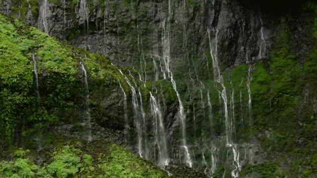 vídeos y material grabado en eventos de stock de aerial view of waterfall on a rocky mountainside near mount waialeale on the hawaiian island of kauai. - kauai