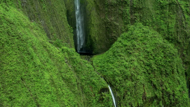 aerial view of waterfall rainforest valley maui hawaii - hawaii inselgruppe stock-videos und b-roll-filmmaterial